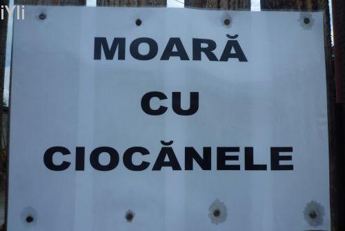 ...ciocanele!